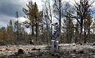 STIHL Bushfire Safety Tips